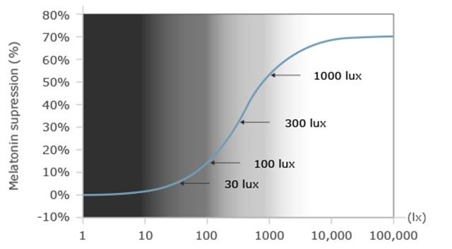 Ảnh hưởng của ánh sáng tới con người - Ảnh 5